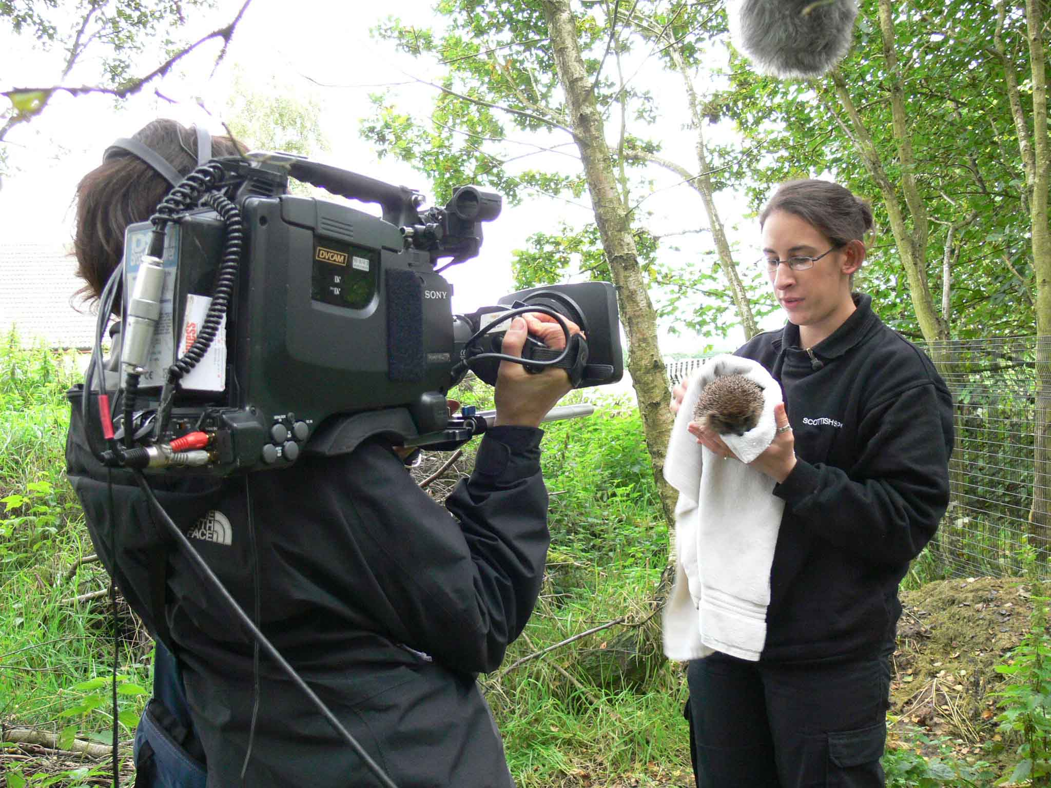 SSPCA officer Nadia with film crew and hoglet